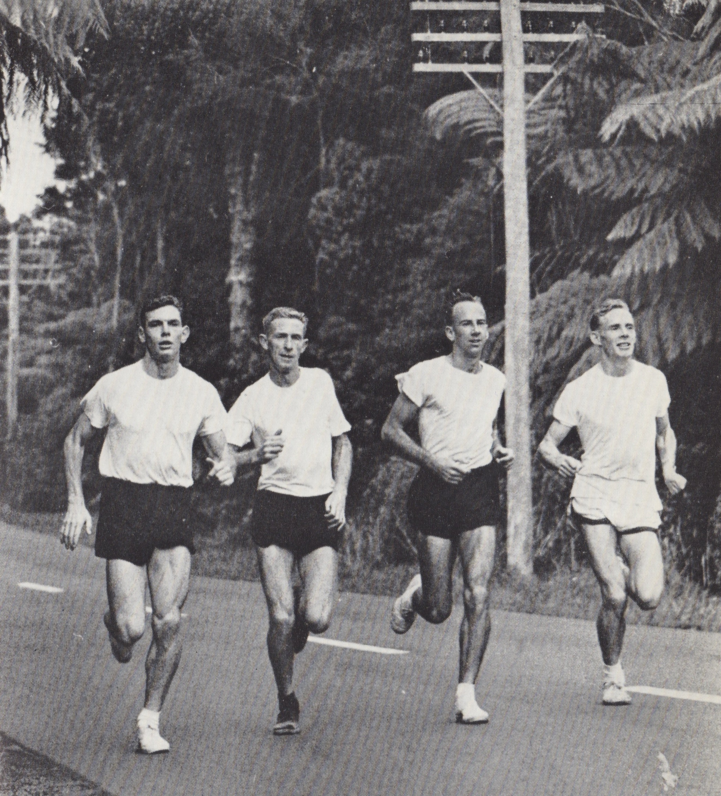 Lydiard runners on Waiaturua Route