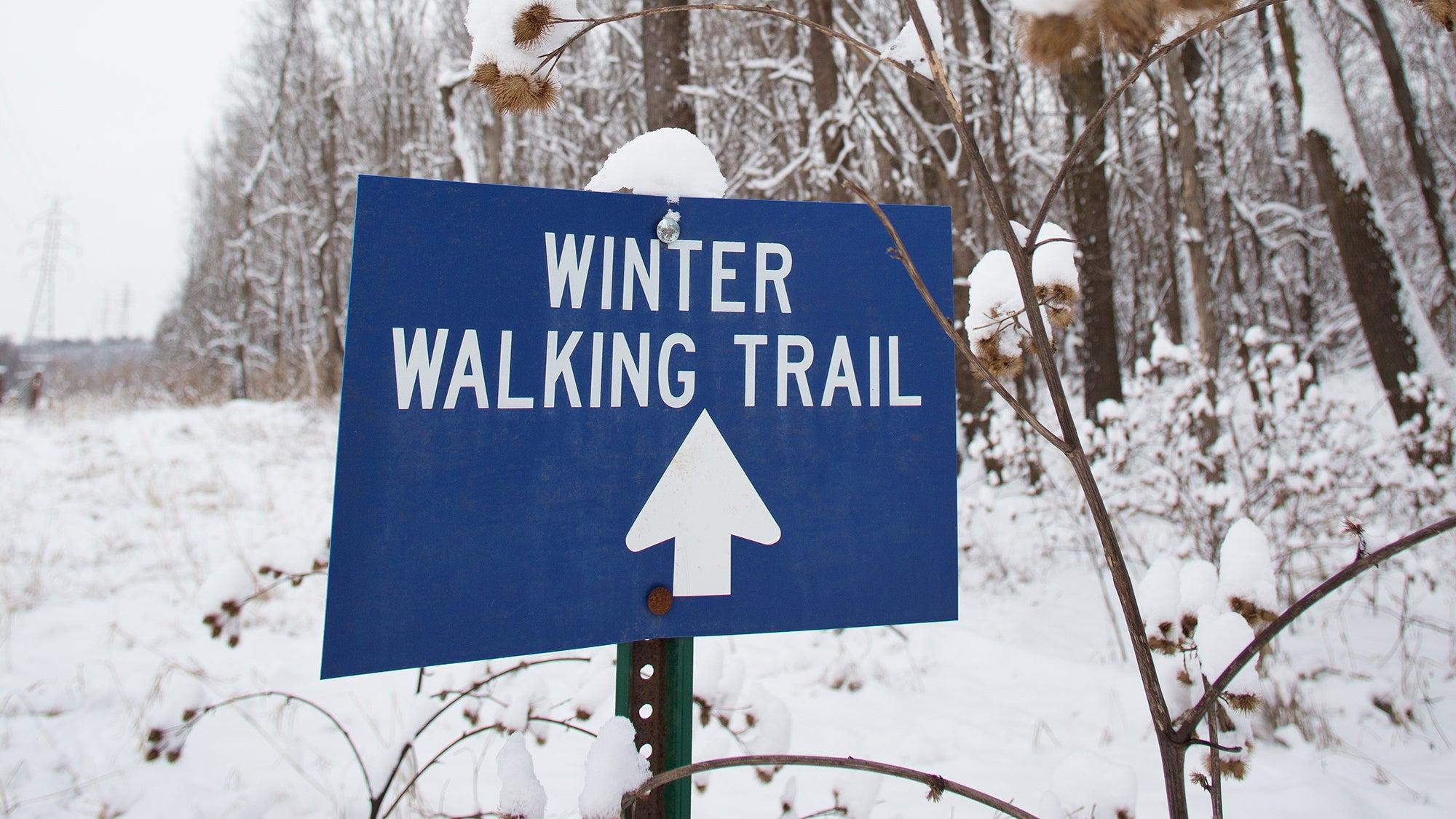 winter running city trail