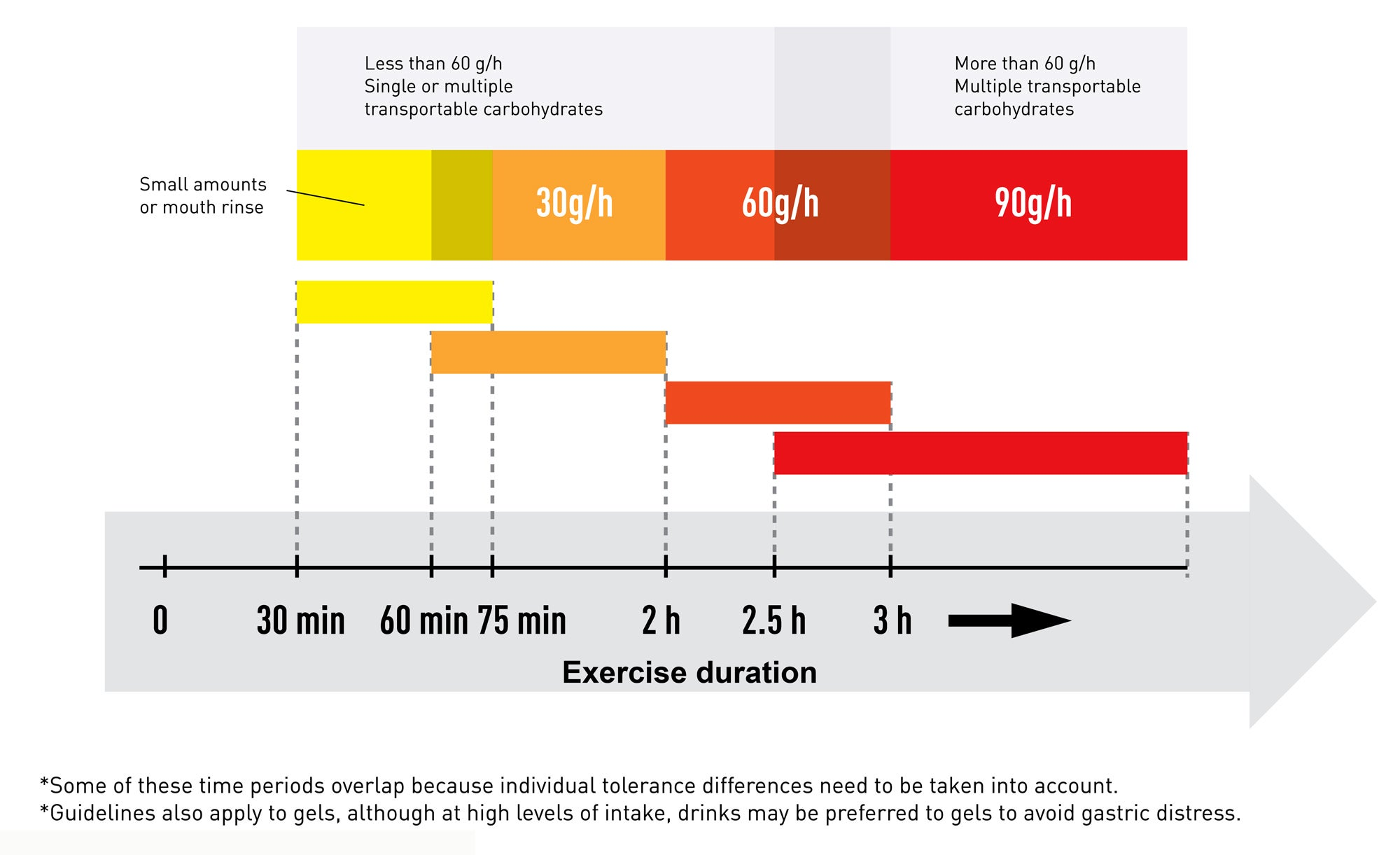 Exercise duration and carbohydrate intake recommendations